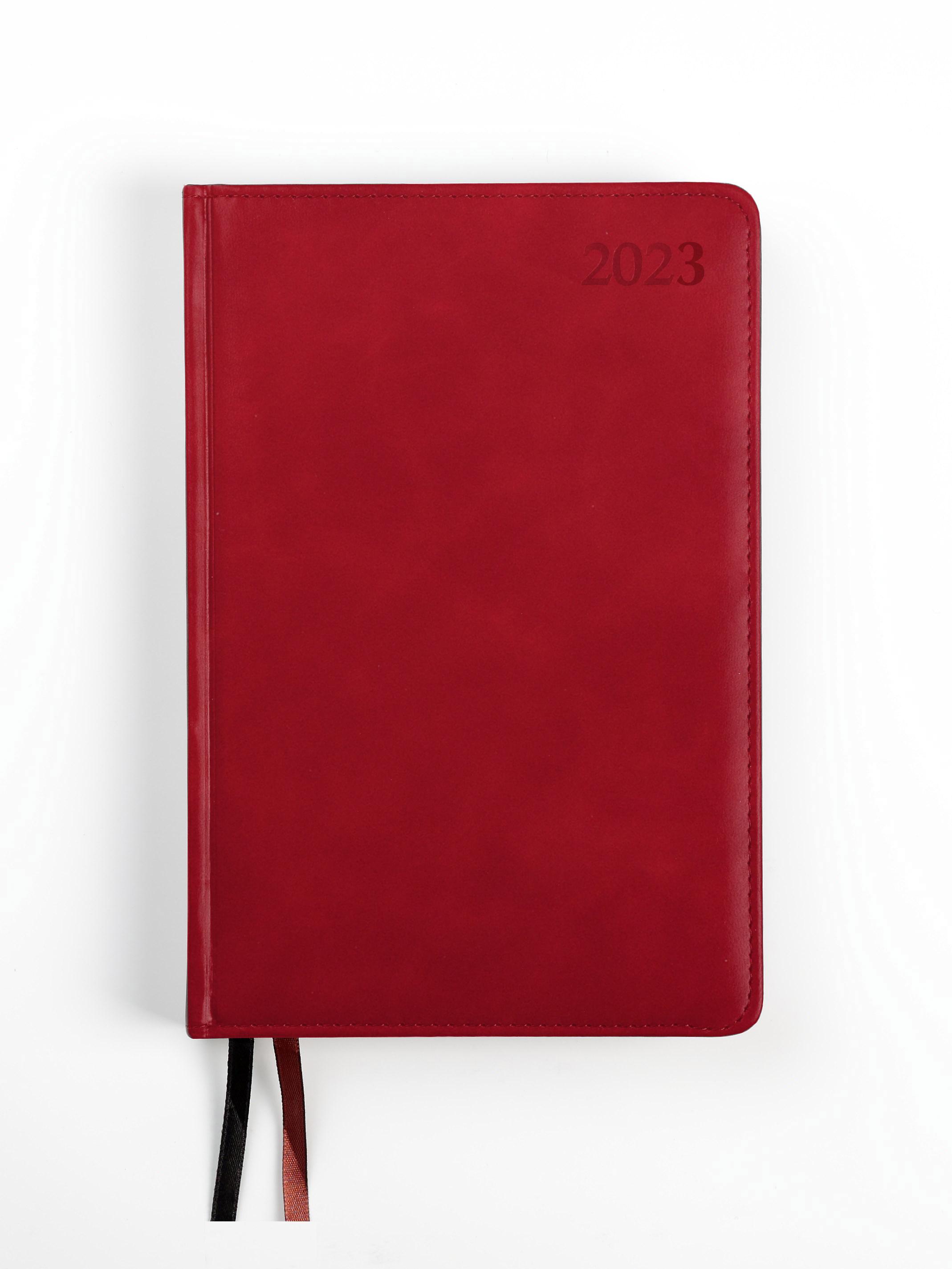 Dienasgrāmata MANAGER EXTRA 2020, PU Soft, A5, sar..