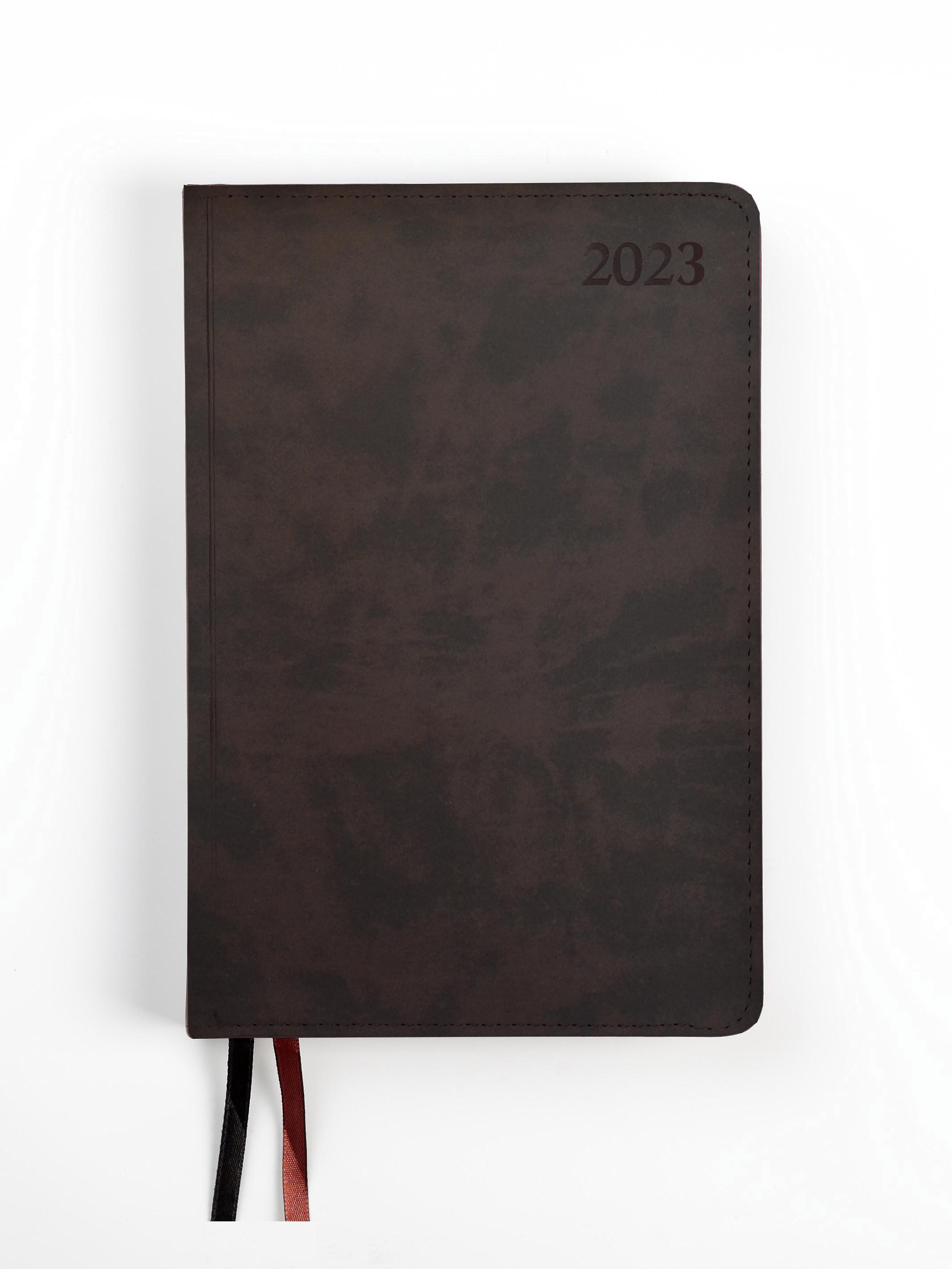 Dienasgrāmata MANAGER EXTRA 2020, PU Soft, A5, brū..